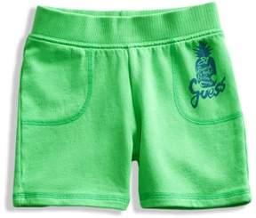 GUESS Knit Shorts (0-24M)