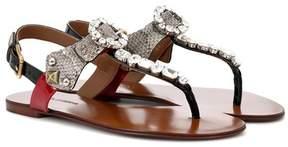 Dolce & Gabbana Embellished snakeskin sandals