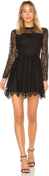 Bobi BLACK Paradise Lace Fit and Flare Dress