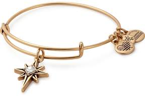Alex and Ani North Star Charm Bangle