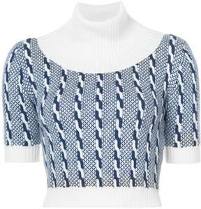 Emilia Wickstead turtleneck bib front knit top