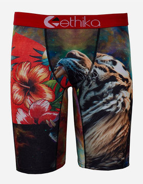 Ethika Growlaxy Staple Boys Underwear