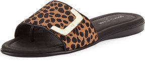 Donald J Pliner Bolt Leopard Slide Sandal, Black/Brown