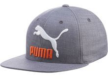 Big Cat Flexfit Hat