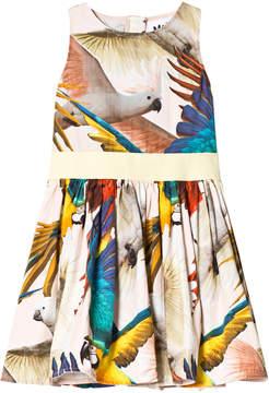 Molo Parrot Print Carli Dress