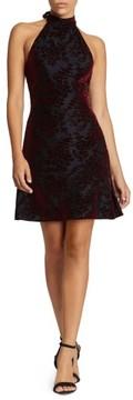 Dress the Population Women's Miranda Velvet Fit & Flare Halter Dress