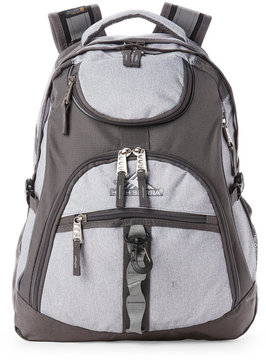 High Sierra Slate Access Laptop Backpack