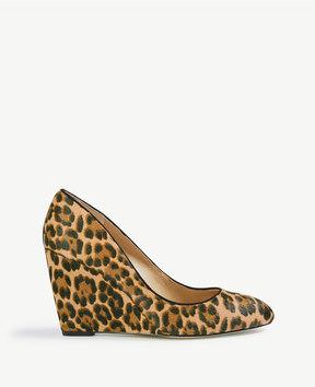 Ann Taylor Molly Leopard Print Haircalf Wedge Pumps