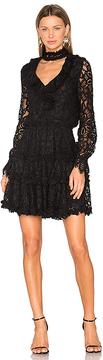 Alexis Catalina Dress