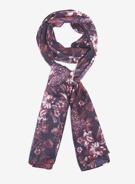 Dorothy Perkins Multi Coloured Sketchy Floral Print Chiffon Scarf