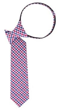 Lord & Taylor Check-Pattern Cotton Tie
