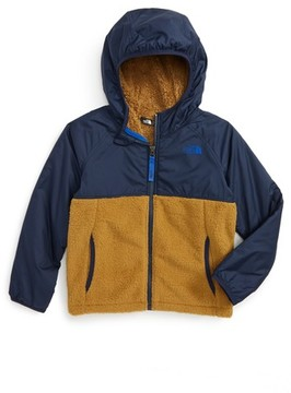 The North Face Toddler Boy's Sherparazo Hoodie