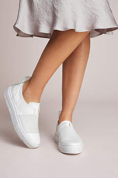 Jil Sander Navy Banded Slip-on Sneakers