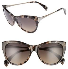 Salt Women's 55Mm Polarized Cat Eye Sunglasses - Amber Turtle