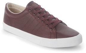 Gola Burgundy Vantage Low Top Sneakers