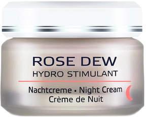 Rose Dew Night Cream by Annemarie Borlind (1.7oz Cream)