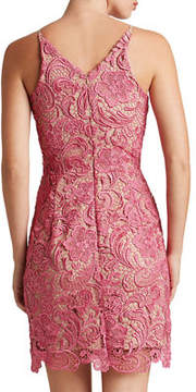 Dress the Population Allie Crocheted Lace Cocktail Dress