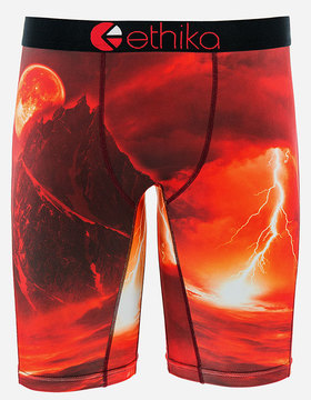 Ethika Weather System Staple Mens Boxer Briefs