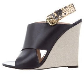 Celine Leather Python-Trim Wedges