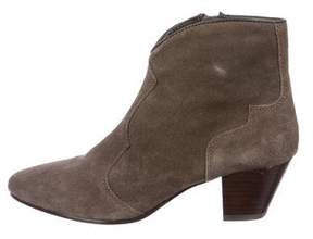 Ash Suede Pointed-Toe Ankle Boots
