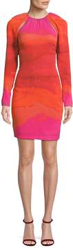Tracy Reese Women's Gradient Sheath Dress