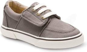 Sperry Top Sider Ollie Jr. Sneaker