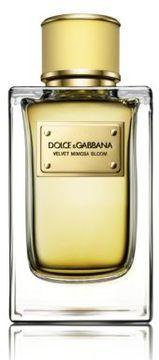 Dolce & Gabbana Velvet Mimosa Bloom Eau De Parfum/5 oz.