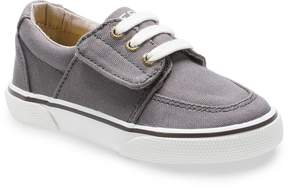 Sperry Boys Ollie Jr. Shoes