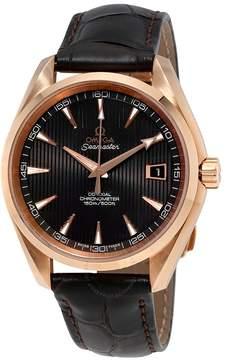 Omega Seamaster Automatic Men's Watch