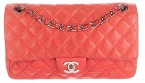 Chanel Ladybug Flap Bag
