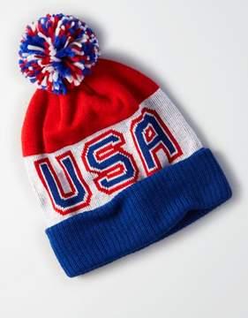American Eagle Outfitters AE USA Pom Pom Beanie