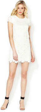 Cynthia Steffe Women's Reese Lace Cap Sleeve Dress