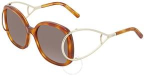 Chloé Brown Gradient Square Sunglasses