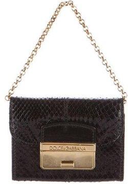 Dolce & Gabbana Snakeskin Card Case - BLACK - STYLE
