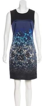 Tahari Printed Sleeveless Dress