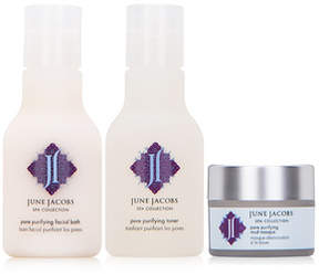 June Jacobs Pore Purifying Essentials