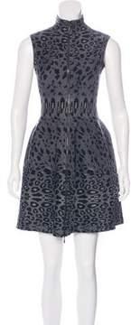 Alaia Leopard Print Fit & Flare Dress