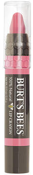 Lip Crayon - Niagra Overlook by Burt's Bees (.11oz Lip Color)