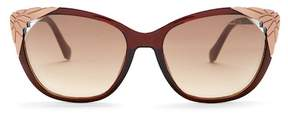 Roberto Cavalli Women's Cat Eye Injected Sunglasses