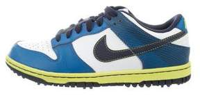 Nike Girls' Dunk Leather Golf Shoes