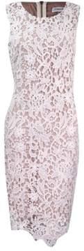 Calvin Klein Women's Guipure Lace Overlay Dress