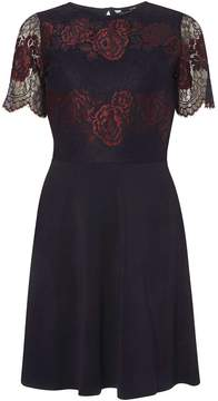 Dorothy Perkins Navy and Berry Lace Skater Dress