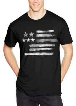 Hanes Men's Lightweight Graphic Tee - Americana Collection