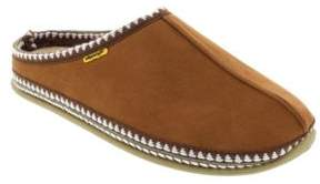 Deer Stags Wherever Moccasins