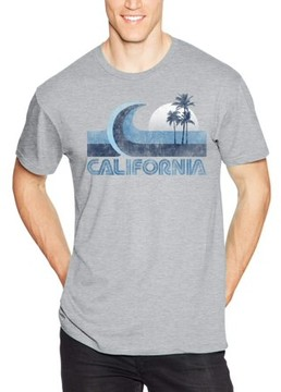 Hanes Men's Lightweight Graphic Tee - Vintage Cali Collection