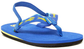 Teva Mush II Sharks Royal Sandal (Toddlers)