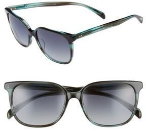 Salt Women's Kintner 55Mm Polarized Cat Eye Sunglasses - Dark Teal