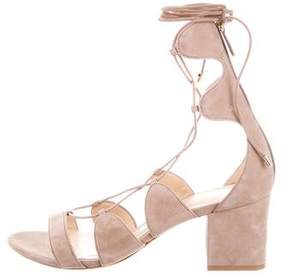 Alexandre Birman Nubuck Lace-Up Sandals
