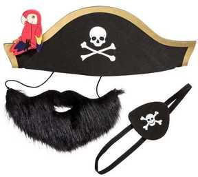 H&M Pirate Costume