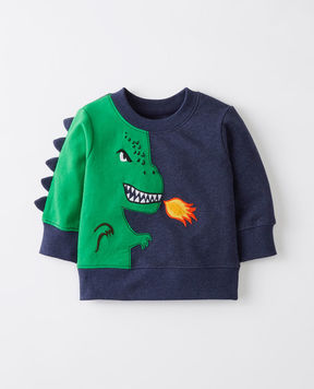 Hanna Andersson Dragon Sweatshirt In French Terry